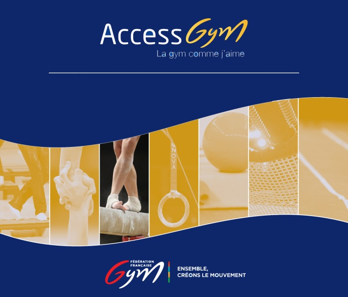 Flyer Access Gym